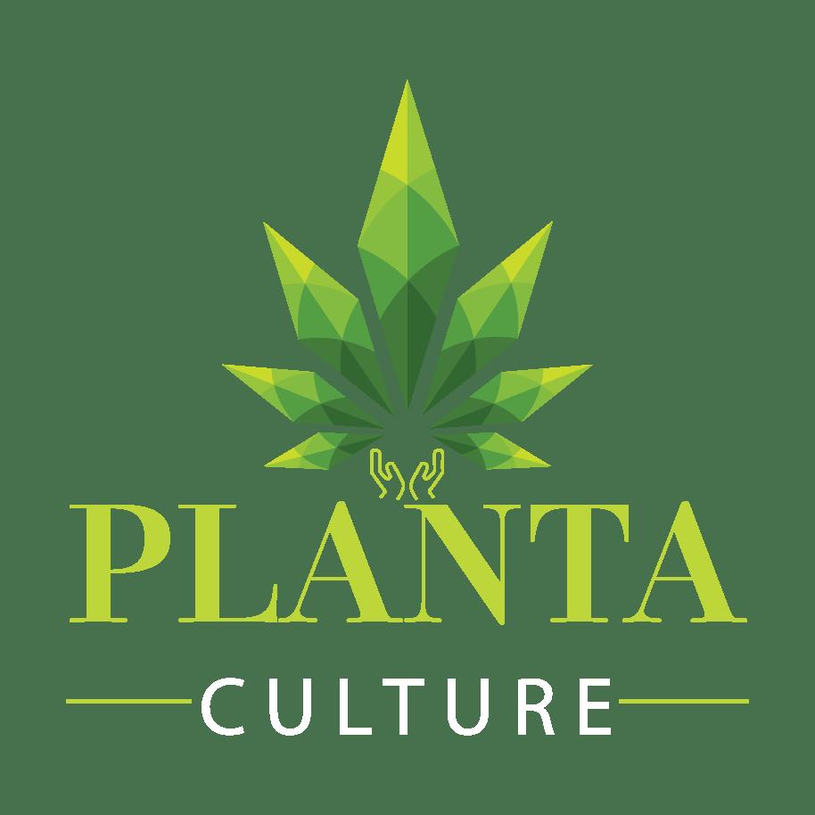 Planta Culture